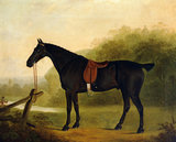 A Saddled Black Hunter in a Landscape