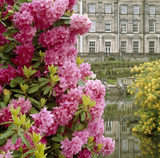 Rhododendrons and the lake in the gardens at Biddulph