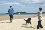 Family playing on beach at Embleton Sands with Dunstanburgh Castle in distance, in Northumberland.