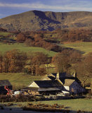 High Loanthwaite farm set amongst fields in autumn sunlight with Coniston Old Man in the background