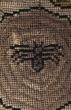 A spider in its a web from a motif on the Marian Needlework at Oxburgh Hall