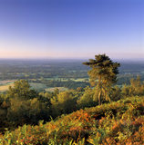 Early morning sun on view from Leith Hill, Surrey, towards South Downs
