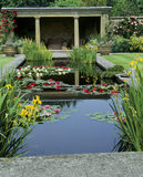 The Pool Garden with pink, crimson & yellow water lilies floating on the water and yellow iris in the corners