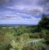 Hindhead common - view from Gibbet hill, with seat