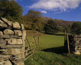 Chapel Stile, Cumbria, in a dry stone wall