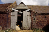 Dilapidated entrance to a Mose House Farm building in the Dudmaston Estate, showing where repair work is to be done