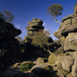 A view of Turtle Rock from Castle Rocks at Brimham Rocks in North Yorkshire