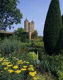 View to the Tower from Cottage Garden, with Achillea, Verbascum and Lychnis Chalcedonica June 92
