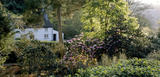 The whitewashed Ferris's Cottage hidden in the woods of the Trelissick Estate