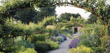 The Pear Avenue in the Kitchen Garden at Beningbrough Hall, with Nepeta (Catmint), campanulas and pear-trees in June