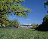 A view over the bluebells to the south front of the House at Stourhead