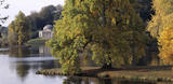 A view across the lake at Stourhead toward The Pantheon and the magnificent Tulip Tree (Liriodendron Tulipifera), in bright sunlight