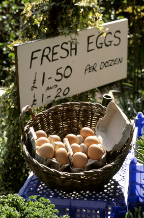 Basket of fresh eggs at the farm shop at Osterley Park
