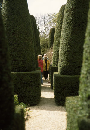 Visitors between the yew pillars of the Pillar Garden at Hidcote Manor Garden