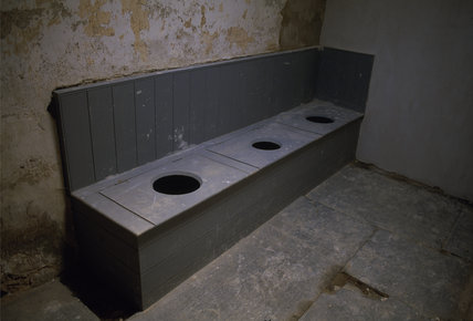 The Thunderbox privies at Llanerchaeron, an C18th estate near Aberaeron