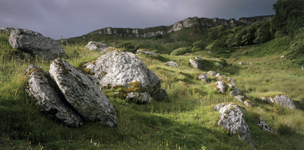 Chalk erratics lay strewn about below the cliffs at Murlough Bay, on a cloudy and grey day