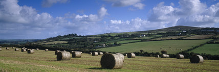 Hay bales on a field at Relebus, looking towards Godolphin Hill
