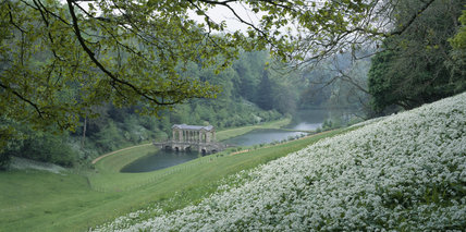 Long view of the Palladian Bridge at Prior Park, built by Richard Jones in 1755 of Bath stone, over the first of three dams on the old fish ponds, wild garlic in the foreground