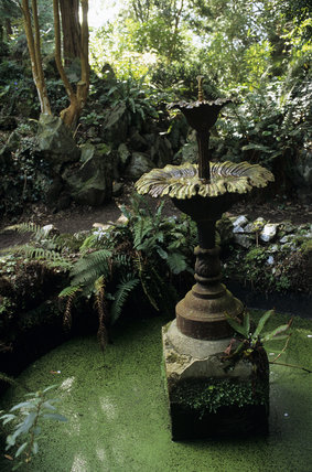 Fountain in the fernery at Greenway gardens