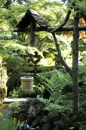 The well in the Japanese Garden at Tatton Park, surrounded by ferns and with a stone lantern in the distance