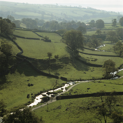 View from Malham Cove to Shorkey Hill on the Malham Tarn Estate in the Yorkshire Dales showing a web of drystone walls across ancient field patterns and footpath beside the winding river