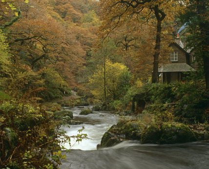 A glimpse of the House at Watersmeet, sitting beside the streams of East Lyn and Hoar Oak Water at their confluence