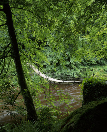 This bridge below Ravens Crag across the gorge at Allen Banks is in an extensive area of hill and river scenery