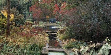 The Pool Garden at The Courts in Autumn, with red and gold foliage surrounding the pool