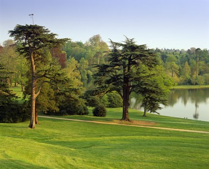 A quiet corner by the lake in Claremont Garden, with two conifers prominent in the foreground