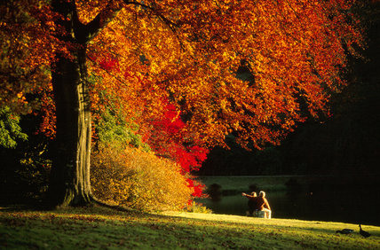 Autumn foliage in bright red and bronze at Stourhead, with a couple enjoying the view
