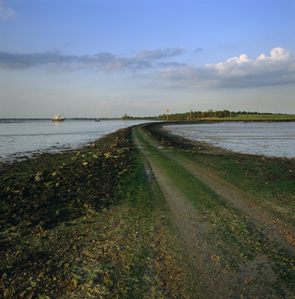 Looking across the causeway to Northey Island, Maldon, Essex, at low tide