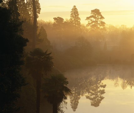 Early morning light creating a golden haze over a lake in Sheffield Park