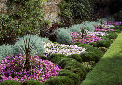 A view of a colourful summer flower border at Peckover House, showing elaborate planting alternating pink and white bedding plants