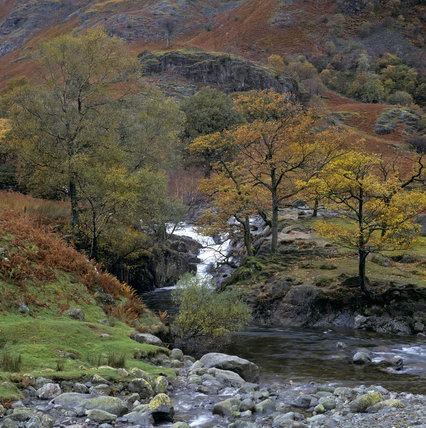 A view up Langstrath Beck where it joins Grenup Gill in Borrowdale