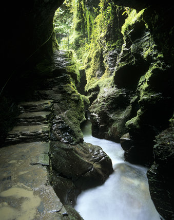 The path beside the Devil's Cauldron in Lydford Gorge, the water foaming white as it streams along the rocky ravine