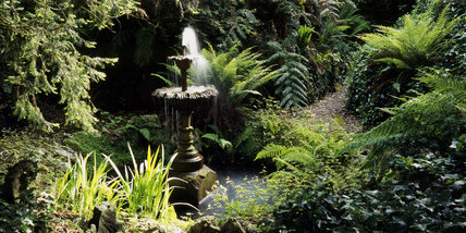 Panoramic view of the Victorian fernery and flowing fountain in the garden at Greenway
