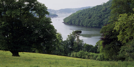 Panoramic view of the River Dart and Kingswear, taken from the meadow on the bank side, near Greenway garden