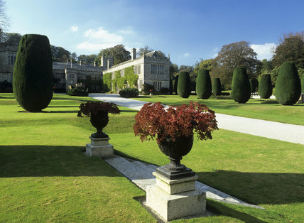 Topiary gracing the lawn and drive up to the House at Lanhydrock
