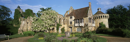 A view of Scotney Castle with a magnificent white wisteria tumbling over the wall