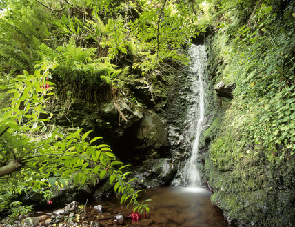 Waterfall at Coolranny, in the area of Fair Head and Murlough Bay in Co. Antrim