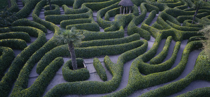 View of the Glendurgan Laurel Maze, the maze dates from 1833