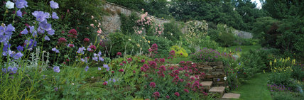 A colourful herbaceous border in the garden at Acorn Bank, Cumbria