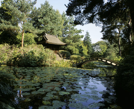 The Shinto Temple on an island in the Japanese Garden at Tatton Park