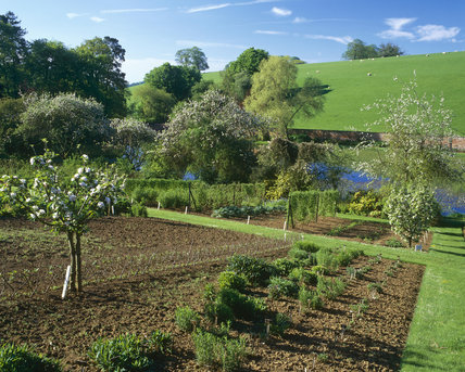 The highly productive kitchen garden at Upton House, neatly laid out ready for the approaching growing season