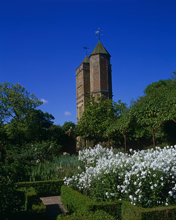 Sweet Rocket (Hesperis matrous) in bloom at Sissinghurst, with the Elizabethan Tower, rising up in the background