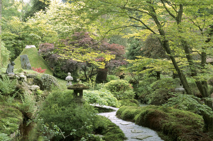 A panoramic view of the Japanese Garden at Tatton House, taking in the Mount Fuji mound, various stone lanterns and a moss verged path and an Acer to the right