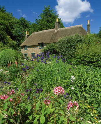 Hardy's Cottage with a blooming garden in the foreground, taken in June