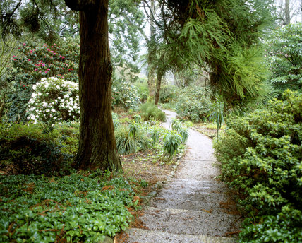 A view down the path to the holiday cottage at Trelissick, with steps