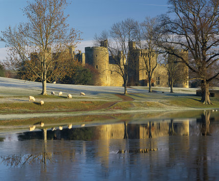 Bodiam Castle taken in the winter, with sheep grazing in front on the frosty ground and the castle lying behind bare trees
