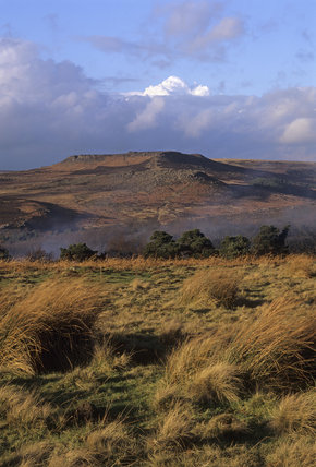 View towards Higger Tor and Carl Wark, on the Longshaw estate
